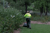 Barcelona: Inclusive employment in park maintenance