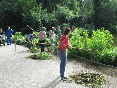Engaging the long term unemployed by greening public spaces and through training