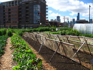 Urban Agriculture Ordinance