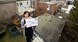Sustainability in The Hague neighbourhoods; participation in co-creation
