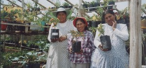 Strengthening the Women of El Alto (Bolivia) through Cultivation of Agricultural  Products
